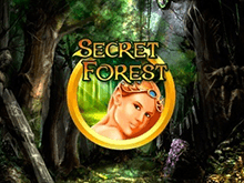 В казино Вулкан Делюкс Secret Forest