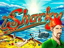 В казино Вулкан Делюкс Sharky